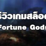 รีวิวเกมสล็อต Fortune Gods