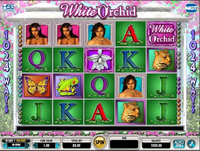 White Orchid Free Slots 1