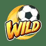 shaolin soccer s wild