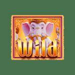 ganesha fortune 1x1 wild